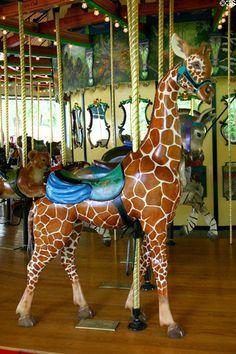 Giraffe merry-go-round animal on carousel at St. Louis Zoo. St Louis, MO.