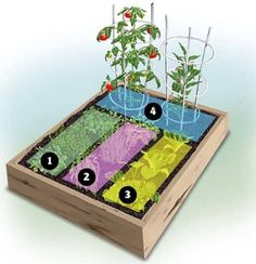A Variety of Raised Garden Bed Plans For A Year-Round Vegetable Garden