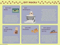 Pet hacks from baths to bad breath and more!