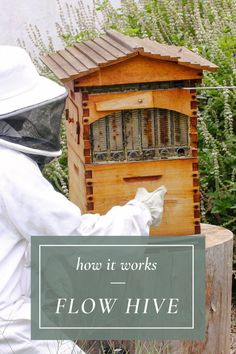 The Flow Hive has certainly introduced a whole new way of extracting honey, which significantly simplifies the process. Find out more about this beekeeping gem. Harvesting Honey, Backyard Beekeeping, Sweet Stories, Save The Bees, Clever Design, Beehive, Queen Bees, Bee Keeping, Gem