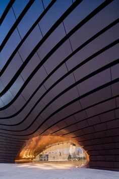 China. Metal louvers. Ordos Art & City Museum. MAD Architects. Amorphous.