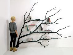 Shelves built out of fallen branches - beautiful reuse!