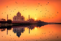 Agra Day Tour Packages Unit of (Fair India Travel) Offers Same Day Taj Mahal Tour by Car. In This Tour You Will Explore The Stunning Beauty of Taj Mahal. So Book Your Taj Mahal Tour Now And Make Your Day Memorable. Beautiful Sunset, Beautiful Places, Amazing Places, Beautiful Birds, Beautiful Homes, Le Taj Mahal, Agra Fort, Day Tours, World Heritage Sites