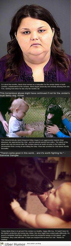 Dog warns parents that babysitter was abusing child
