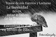 Trazos de mis Escritos y Lecturas: La serenidad, no es estar libre de la tormenta, si...