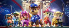 HELP IS ON THE WAY WITH THE FIRST LOOK AT PAW PATROL: THE MOVIE!Catch the new trailer when it debuts next week!(From L-R): Zuma (voiced by Shayle Simons), Rocky (voiced by Callum Shoniker), Skye (voiced by Lilly Bartlam), Chase (voiced by Iain Armitage), Marshall (voiced by Kingsley Marshall), and Rubble (voiced by Keegan Hedley) in 'Paw Patrol: The Movie,' hitting cinemas August 13, 2021. All images © 2021 Paramount Pictures. All Right Reserved. Courtesy of Spin Masters Entertainment.The…