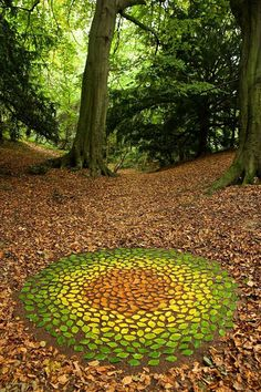 James Brunt creates elaborate ephemeral artworks using the natural materials he finds in forests, parks, and beaches near his home in Yorkshire, England. This form of land art, popularized and… Art Et Nature, Nature Crafts, Nature Images, Land Art, Art Environnemental, Ephemeral Art, English Artists, Environmental Art, Outdoor Art