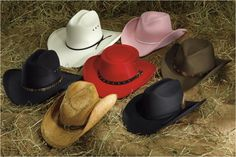 We carry a large selection of hats by Stetson, Resistol, Bailey, and Tony Lama here at our store in Rolling Prairie Indiana.