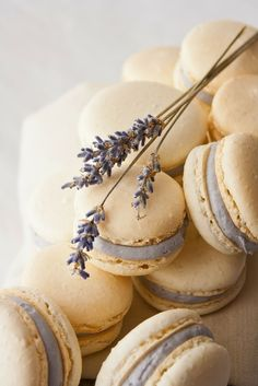 Hint of Vanilla: Honey Lavender Macarons - perfect for your lavender wedding