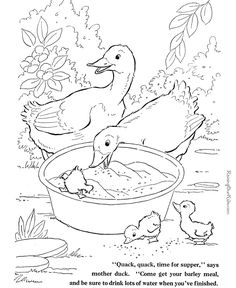 Coloring Pages Ducks See the category to find more printable coloring sheets. Also, you could use the search box to find what you want. Farm Animal Coloring Pages, Easter Coloring Pages, Coloring Book Pages, Coloring Pages For Kids, Coloring Sheets, Animal Templates, Templates Free, Shape Templates, Blogger Templates