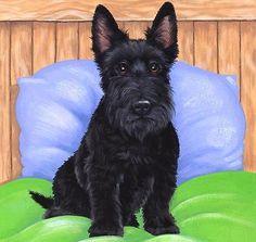 "Dogs Scottie""Best Bed!""Limited edition Fine Art Print Original by Sue Barratt"