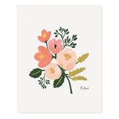 Affiche fleurs - corail