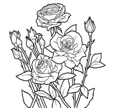 rose flower unique coloring page for kids