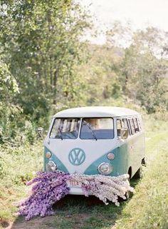 VW by Zee