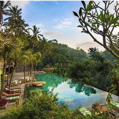 Operation FitBuzzer #weekend destination… Jungle Fish Bar #Bali  Good morning…