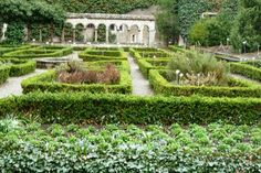 All Saints Herb Garden in Schaffhausen, a reconstruction of the medieval herb garden where medicinal plants and herbs were grown by the monks living in the cloister.