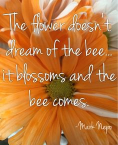 The flower doesn't dream of the bee...it blossoms and the bee comes. Mark Nepo
