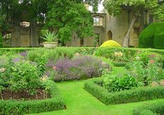 i'm going to have a little english garden one day <3