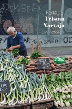 Feria de Tristán Narvaja, Montevideo, Uruguay. This is the city's premier fresh produce and flea market. Held every Sunday, it's a feast for the eyes.   heneedsfood.com
