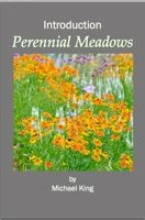 Discover how best to use ornamental shrubs, grasses and perennials in comtemporary garden designs. Meadow Garden, Dry Garden, Garden Beds, Dutch Gardens, Small Gardens, Hardy Perennials, Flowers Perennials, Prairie Planting, Herbaceous Border