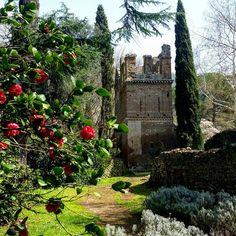 Ninfa. #total_italy #pocket_italy #infinity_italia #italy_bestart #ita_details #carpediem_sga #loves_united #italia_super_pics #italy_photolovers #loves_madeinitaly #loves_united_italia #top_italia_photo #italian_trips #loves_bestpic #kings_alltags #pas_pictures #real_globo #italiainunoscatto#ioscatto_emozioni#foto_naturel #vivonatura #h2o_natura #fotofanatics_nature#fotografandolitalia#thehub_italia