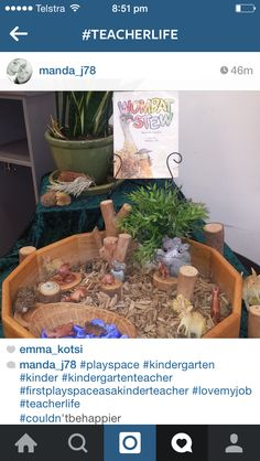 Wombat stew small world found on Instagram Animal Activities, Preschool Activities, Wombat Stew, Preschool Library, Early Childhood Activities, Tuff Tray, Creative Activities For Kids, Small World Play, Animal Habitats