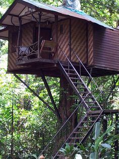 Treehouse accommodation, Limestone Lake Rainforest Tours, Thailand