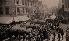 June 23rd, 1885 -- Barnum & Bailey's Circus rolling into Salem, MA 130 years ago -- priceless.