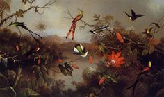 martin johnson heade art | martin johnson heade