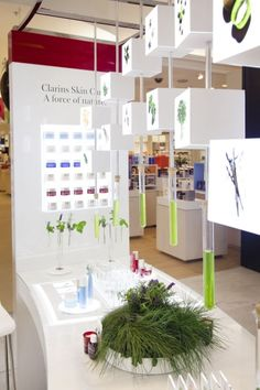 Clarins Plants Our Science