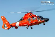 Dolphin Show Coast Guard Rescue, Us Coast Guard, Military Helicopter, Military Aircraft, Air Show, Helicopters, Aviation, Cold War, Airplanes
