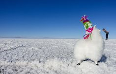 Uyuni Bolivia, Peru Travel, Illusions, Jeep, Humor, Outdoor Decor, Salar De Uyuni, Places, Pictures