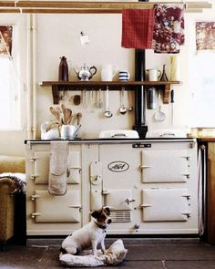 AGA stove- I would love one of these !