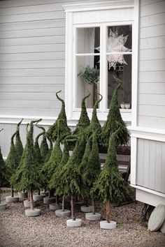easy DIY Xmas trees w/ extra branches of pine trees. looks like grinch hat.
