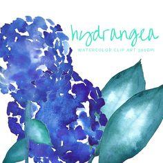 HYDRANGEA Clip Art Watercolor blue green leaves by theartcitizen