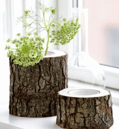Cute. Plus you can put dead plants in here and it'll just look rustic.