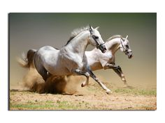 Running Horse https://walldecordeals.com/1-panerunning-horse-wall-print-painting-canvas-large-art-hd-picture-home-decoration-for-living-room-modern-oil-painting/