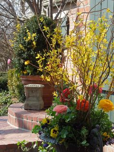 The French Tangerine Jan's beautiful Spring pots!
