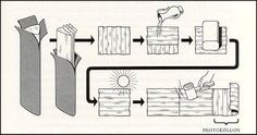 Graphic concerning how to make papyrus.