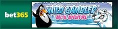 You can now play the Wild Gambler Arctic Adventure slot game at bet365 Games – read about the game and watch a video preview: http://www.casinomanual.co.uk/bet365-games-adds-wild-gambler-arctic-adventure-slot/