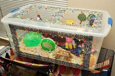 I've stated in THIS post (when all I had finished so far was the lid) that a lovely gal from Hamster Central posted her finished bin cage and it set a whole new level to the . Hamster Bin Cage, Gerbil Cages, Hamster Care, Hamster Stuff, Hamster Ideas, Diy Hamster Toys, Pet Mice, Pet Rats, Hedgehog Cage