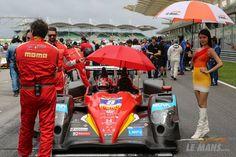 Le Mans, Sepang, Asian, Pilots