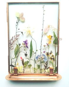 Image via Tuin Van Judith Homemade Art, Pressed Flower Art, Just Dream, How To Preserve Flowers, Paint Colors For Home, Flower Frame, Dream Decor, Diy Wood Projects, Flower Crafts