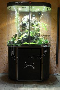 Cold Vivarium - so far, this is the only setup I have found that can drop the temperature to the 50's and still remain a true display tank. Other methods involve so much insulation and jerry-rigging they lose the aesthetics, and the ability to keep fauna as well as flora.