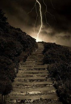 stairway to WHERE??? *LOL*