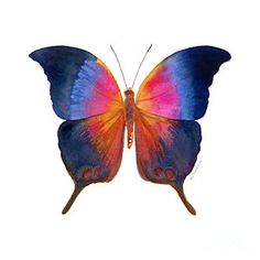 Painting - 96 Brushfoot Butterfly by Amy Kirkpatrick