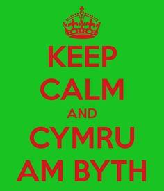 Cymru am byth, cus I'm part Welsh <3
