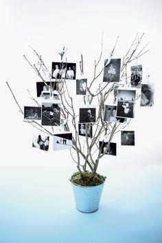 DIY Wedding Reception Decor - Photo tree (BridesMagazine.co.uk)