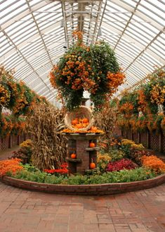 fall flower garden tour, flowers, gardening, outdoor living, seasonal holiday decor