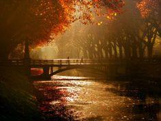 Все-таки осень— это прекрасно